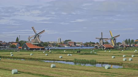 nederlands : Nederlandse windmolens in de close-uplengte van Nederland Stockvideo