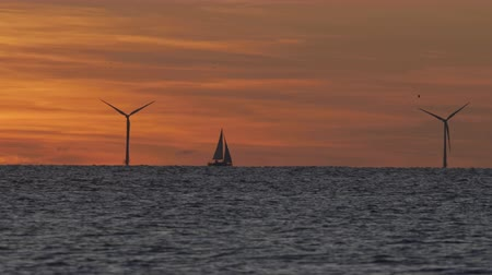 устойчивость : Windfarm on the sea at sunset Стоковые видеозаписи