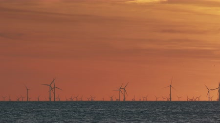 turbine : Windfarm on the sea at sunset Stock Footage