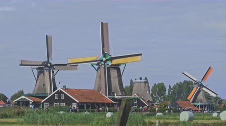 powódź : Dutch windmills in Netherlands closeup footage