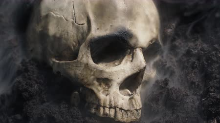 çürümüş : Human skull on the wet soild with smoke flowing
