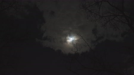 craters : Full moon against cloudy night sky Stock Footage