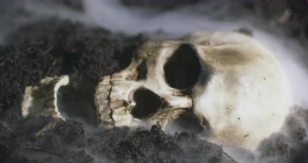 matança : Human skull on the wet soild with smoke flowing