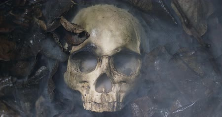 mourir : Human skull on the wet soild with smoke flowing