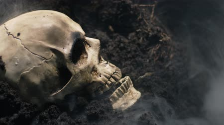 cadavre : Human skull on the wet soild with smoke flowing