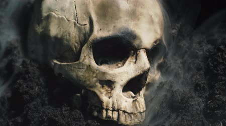 koponya : Human skull on the wet soild with smoke flowing
