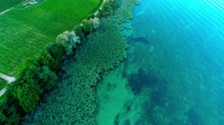 montanhas rochosas : Picturesque 4k top drone aerial view on calm blue emerald water in wild nature forest green trees by ocean shore beach Stock Footage