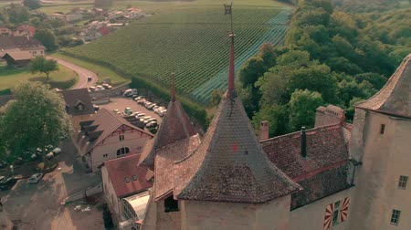 vintage : Beautiful 4k aerial drone panorama view on ancient medieval castle on green hill in province wine yard field landscape
