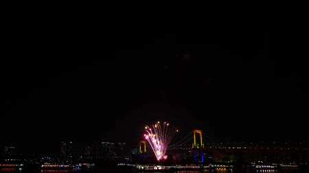 детали : Gorgeous bright colourful firework explosion on dark night sky over big city illumination light Tokyo japanese festival