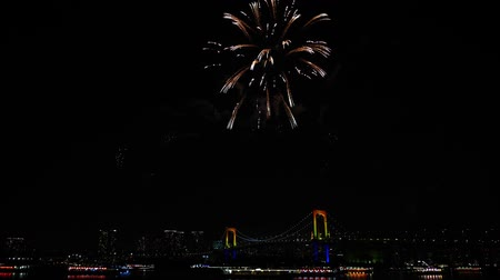 детали : Stunning bright colourful firework explosion on dark night sky over big city illumination light Tokyo japanese festival