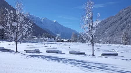vries : Marvelous time lapse aerial drone flight over snow covered pine tree winter forest in cozy house Alps mountain landscape