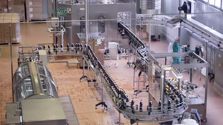 drink industry : Production line. Pop and Soda, carbonated drink, factory line.
