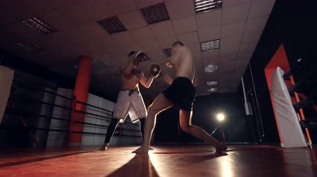 harc : The boxer is hitting trainer with arms and legs. MMA training. Stock mozgókép