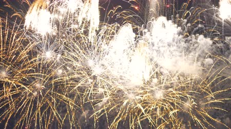 firework display : The sky is full of sparkling firework bombs.