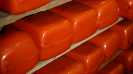 refrigeração : Orange red cheese loaves are stored in rows.