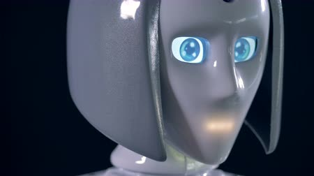 face id : A female robot head with big eyes.