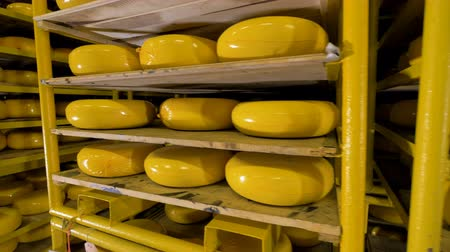 parmigiano : Warehouse of cheese at milk products factory.