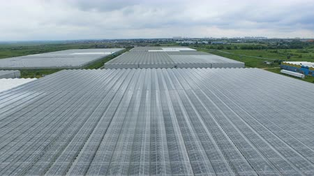 dach : A view from the air on a large greenhouse facility.