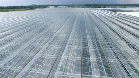 dach : A modern greenhouse with open type roofing.