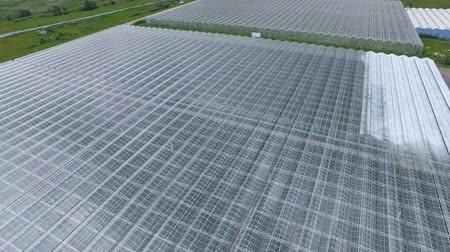 dach : A view from above on a large nursery and other production facilities. Wideo