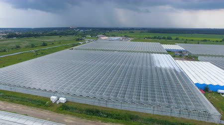 agricultural economy : A large greenhouse under a dark cloudy sky. Stock Footage