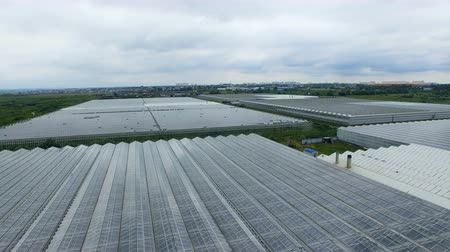 agro : Drone fly over the greenhouses. agricultural industry concept. Aerial shot in 4K.