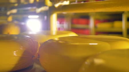 gouda : A close-up view on yellow cheese wheels on a shelf. Stock Footage
