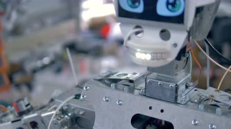 droid : Robots steel body frame and a head. Stock Footage