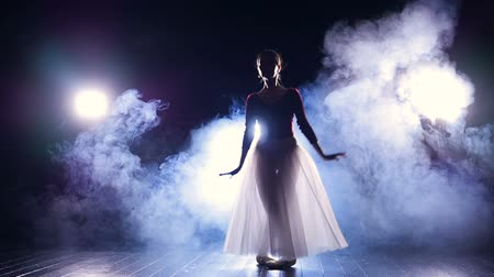 subir : A ballerina makes perfect echappes in the dark.