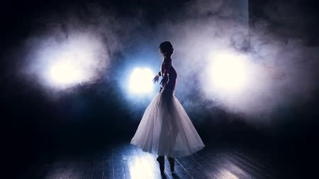 gracefully : A ballerina dances in the artificial stage fog. Stock Footage