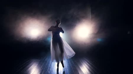 brocade : A ballerina walks to the camera in dancing movements.