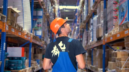 scrutiny : A back view on a worker looking up warehouse racks. Stock Footage