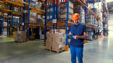 aisles : A warehouse employee looks around different aisles. Stock Footage