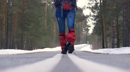 клетчатый : Young woman hiking with a backpack in beautiful winter forest, walking on a asphalt road. Стоковые видеозаписи