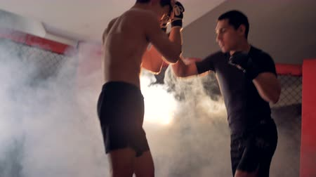 puncs : Professional two mma athletes are fighting.