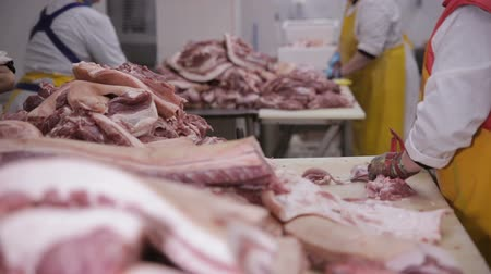 butchers shop : Food processing plant. Hands cutting fresh meat at the meat factory. Stock Footage