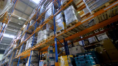 стенд : A  low angle view on a high warehouse rack full of boxes. Стоковые видеозаписи
