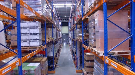 dağıtım : A downwards shot of many levels of warehouse racks. Stok Video