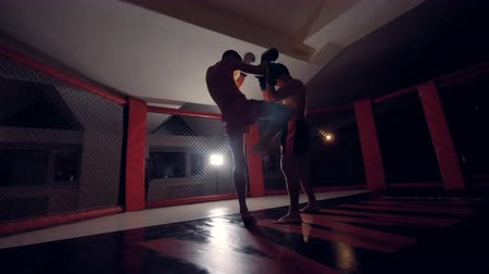 klatka : Two fighters start their sparring in a cage.