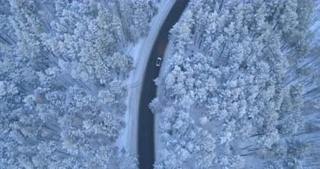 escorregadio : Car ona winter forest road between snow-covered pine trees. Stock Footage