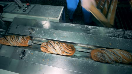 sugar loaf : Sweet bread covered with poppy seeds and sugar gets unloaded into a packing machine. 4K. Stock Footage