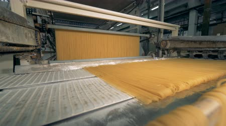 vermicelli : Raw spaghetti going through conveyor in a pasta factory. 4K. Stock Footage