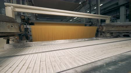 vermicelli : Industrial equipment for spaghetti manufacturing at a pasta factory.