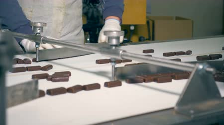 прямоугольник : Two factory workers are sorting chocolate sweets