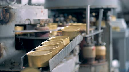 konzervált : Cans are moving on the narrow conveyor line and fall down, close up.