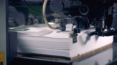 fed : Paper sheets are loading in offset printing press machine. Stock Footage