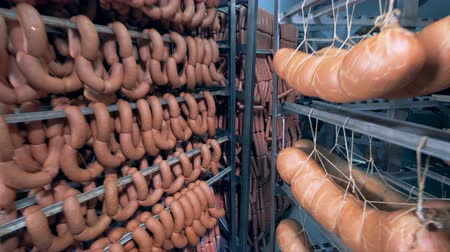 kept : Thick and thin sausages along with large sausage sticks are hanging in a storage room