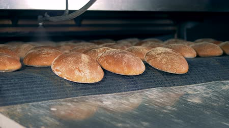 хлеб : Fresh breads comes out from the oven. Baking bread concept. Food factory indoor.