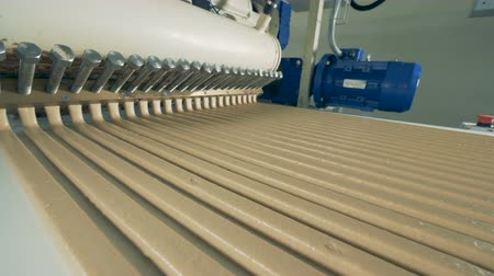 pralina : Long parallel lines of candy cream are flowing along the conveyor belt