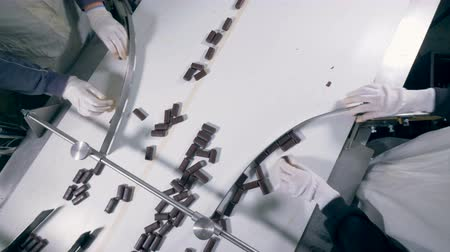 identical : Chocolate sweets are getting sorted and adjusted manually
